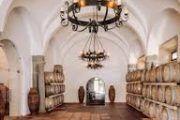Tour vinico gastroómico cultural / Wine and gastronomy tour